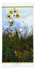 Beach Sheet featuring the photograph Wildflowers And Mentor Marsh by Joan  Minchak