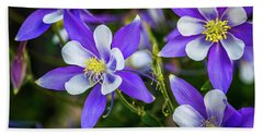 Wildflowers Blue Columbines Beach Towel by Teri Virbickis