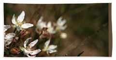 Wildflowers Beach Sheet by Marna Edwards Flavell