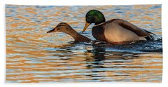 Wildlife Love Ducks  Beach Towel