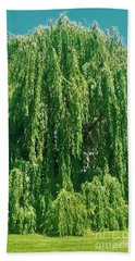 Willow Weep For Me Beach Towel