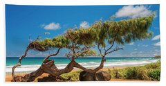 Wind Blown Tree Beach Sheet by Brian Harig