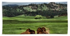 Wind Cave Bison Beach Towel