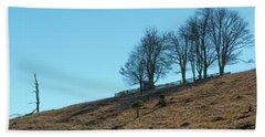Windswept Trees - December 7 2016 Beach Sheet