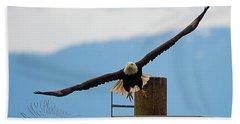 Wing Span Beach Sheet