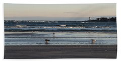 Wingaersheek Beach Seagulls At Sunrise Beach Towel