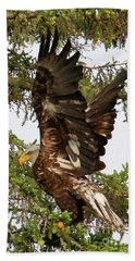 Beach Sheet featuring the photograph Winging-it Up The Tree 1 by Debbie Stahre