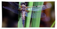 Wings Of The Cattail Beach Towel
