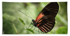 Wings Of The Tropics Butterfly Beach Towel