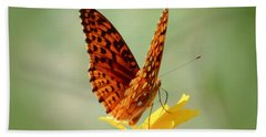 Wings Up - Butterfly Beach Towel by MTBobbins Photography