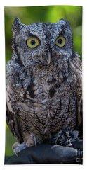 Winston Wildlife Art By Kaylyn Franks Beach Towel
