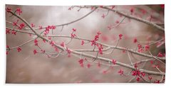 Beach Towel featuring the photograph Winter And Spring by Terry DeLuco