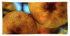 Winter Apples 2 Beach Towel by Jerry Sodorff