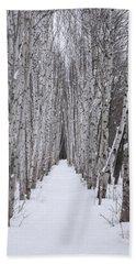 Winter Birch Path Beach Towel
