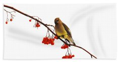 Winter Birds - Waxwing  Beach Sheet by Andrea Kollo