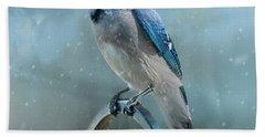Winter Blue Jay Square Beach Sheet