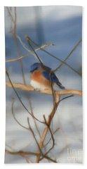 Winter Bluebird Art Beach Sheet