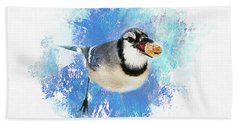 Beach Towel featuring the photograph Winter Bluejay by Darren Fisher