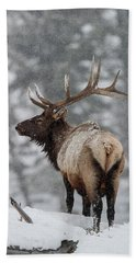 Winter Bull Elk Beach Towel