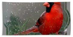 Winter Cardinal Beach Sheet
