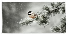 Winter Chickadee Beach Sheet