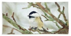Winter Chickadee Beach Towel
