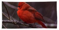 Winter Crimson  Beach Towel