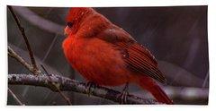 Winter Crimson  Beach Sheet