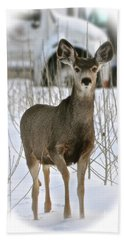 Winter Deer On The Tree Farm Beach Sheet