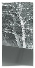 Beach Towel featuring the photograph Winter by Donna Lee