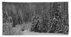 Beach Sheet featuring the photograph Winter Fairy Tale by Yulia Kazansky