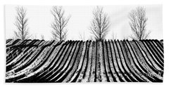 Winter Fields Beach Towel by Mike Santis