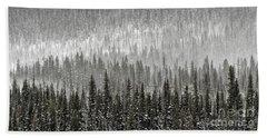 Winter Forest Beach Sheet by Brad Allen Fine Art