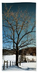 Beach Towel featuring the photograph Winter Glow by Karen Wiles