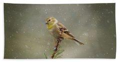 Winter Goldfinch Beach Towel