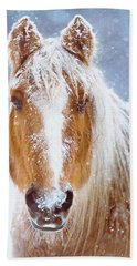 Winter Horse Portrait Beach Towel