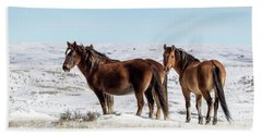Winter In Sand Wash Basin - Wild Mustangs Beach Sheet