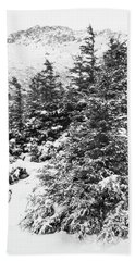 Winter Night Forest M Beach Sheet