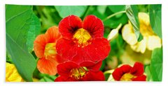 Winter Park Nasturtium 2 Beach Towel