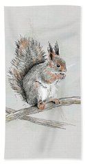 Winter Red Squirrel Beach Towel
