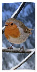 Winter Robin Beach Towel