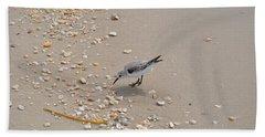 Winter Sanderling Beach Sheet
