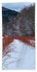 Winter Scene Beach Towel by Tom Singleton