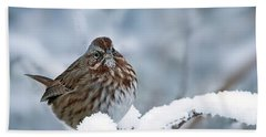 Winter Song Sparrow - 365-301 Beach Sheet by Inge Riis McDonald