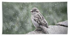 Winter Sparrow Beach Towel