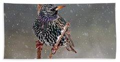 Winter Starling 2 Beach Sheet