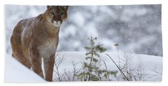 Winter Storm Beach Towel by Steve McKinzie