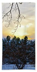 Winter Sunset On The Tree Farm #2 Beach Towel