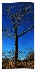 Winter Tree Beach Towel