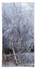 Winter Trees Beach Towel by Jacqi Elmslie